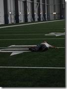 Aaron sleep 10 yard line